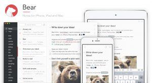 bear notes screenshot