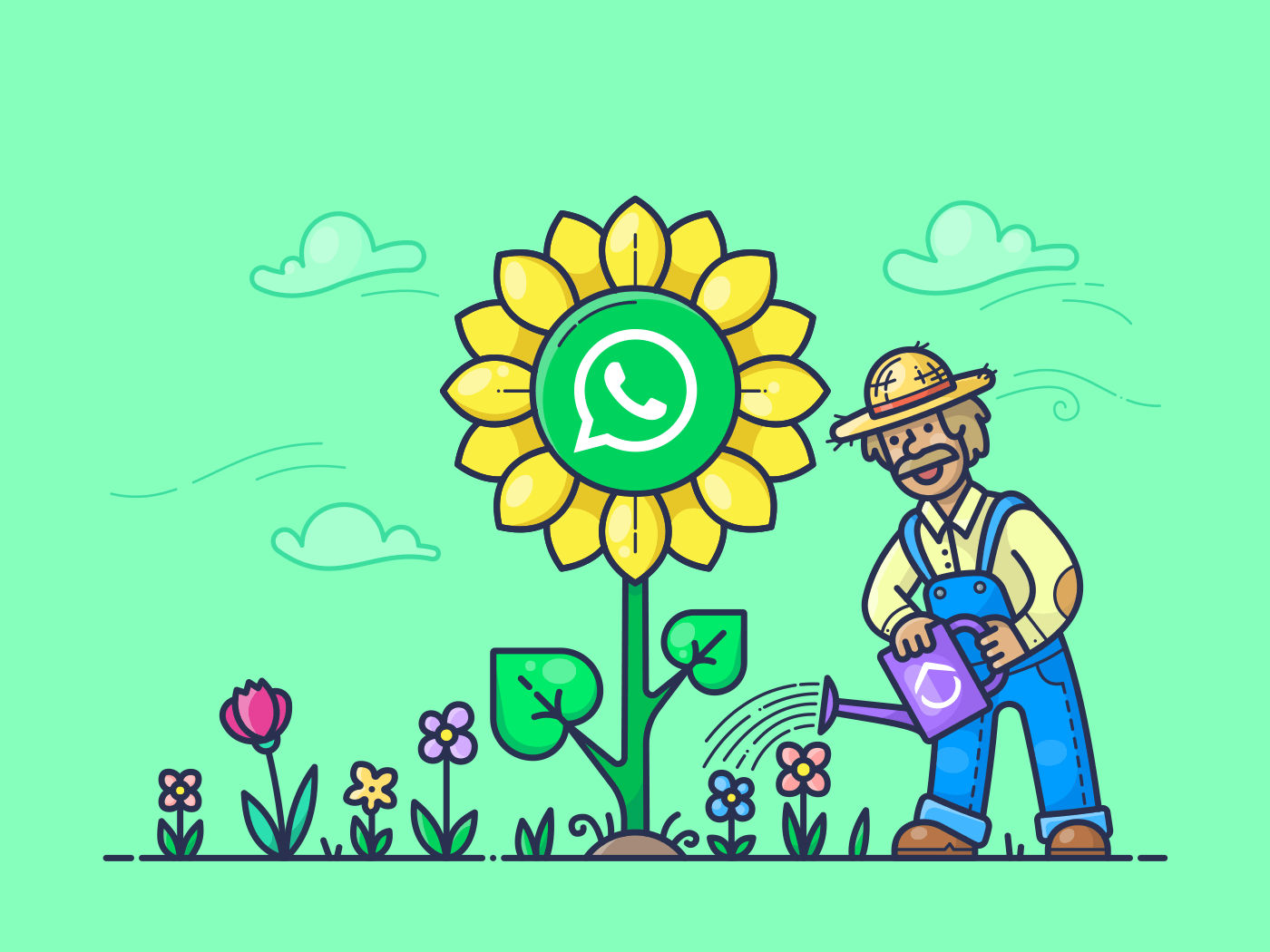 whats app growth