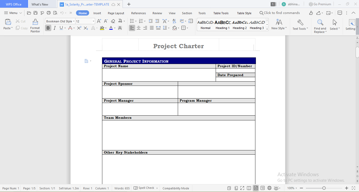Solarity project charter template